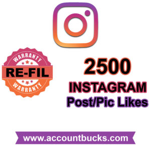 Standard Plan: 2500 Instagram Post/Pic Likes