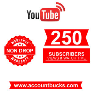 Standred Plan: 250 High Quality Subscriber