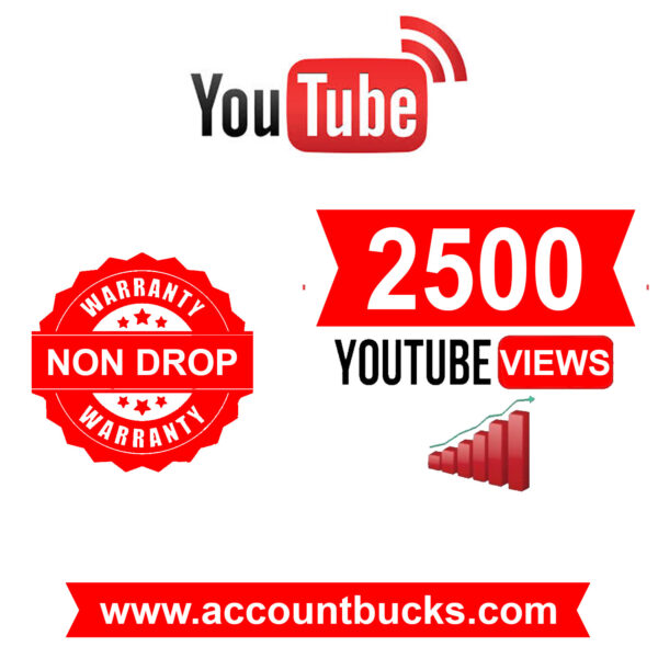 Standred Plan: 2500 World Wide Youtube Views