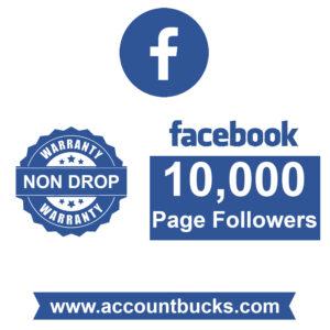 Diamond Plan: 10,000 Facebook Page Followers