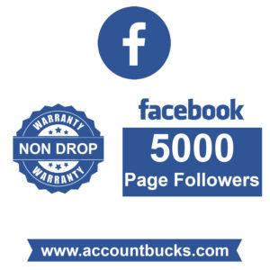 Premium Plan: 5000 Facebook Page Followers