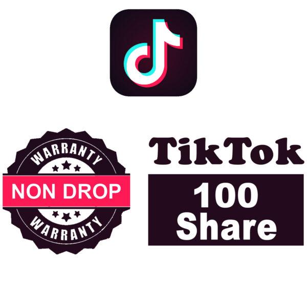 Basic Plan: 100 TikTok Shares